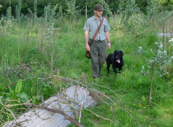 gundog training in gloucestershire
